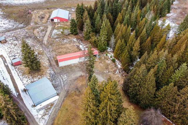 200 Endicott Loop, Priest River, ID 83856 (#202111911) :: Elizabeth Boykin & Jason Mitchell Real Estate WA