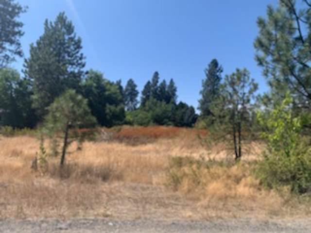 6XX S Rimrock Dr, Spokane, WA 99224 (#202112141) :: Alejandro Ventura Real Estate