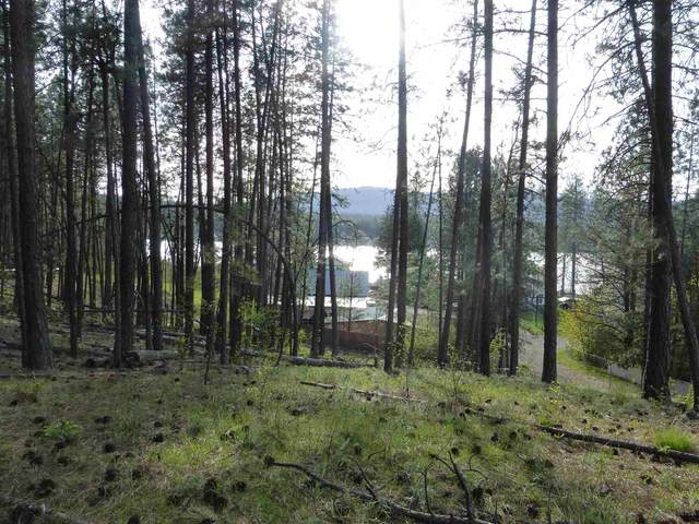 Lot 1 Thomas Ln Block 1, Nine Mile Falls, WA 99026 (#202112243) :: Freedom Real Estate Group