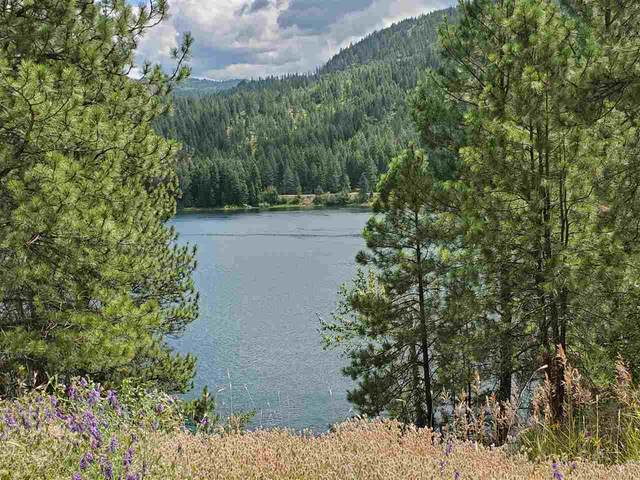 2646 Northport Flatcreek Rd, Kettle Falls, WA 99141 (#202113003) :: The Spokane Home Guy Group