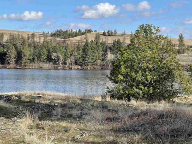 12000 S Meadow Rd, Medical Lake, WA 99022 (#202113072) :: The Hardie Group