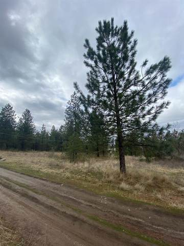 XXX Wabash St, Spokane, WA 99217 (#202113283) :: Five Star Real Estate Group