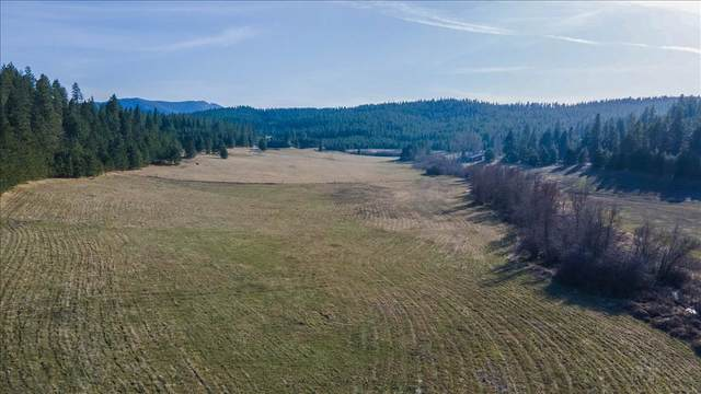 1877 S Stateline Rd, Liberty Lake, WA 99019 (#202113448) :: Inland NW Group