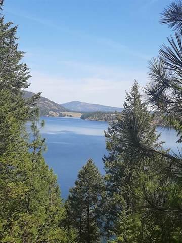 XXX Long Lake Rd, Ford, WA 99013 (#202113559) :: Top Spokane Real Estate