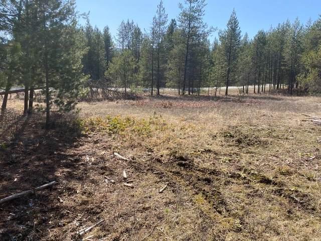 XX-TBD Wilderness Ave, Ione, WA 99139 (#202113630) :: Elizabeth Boykin | Keller Williams Spokane