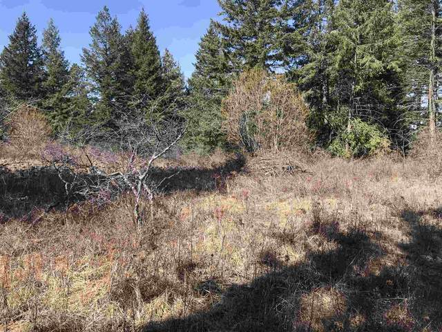 0000 N Conklin Rd North Lot  Appr, Chattaroy, WA 99003 (#202113713) :: The Hardie Group
