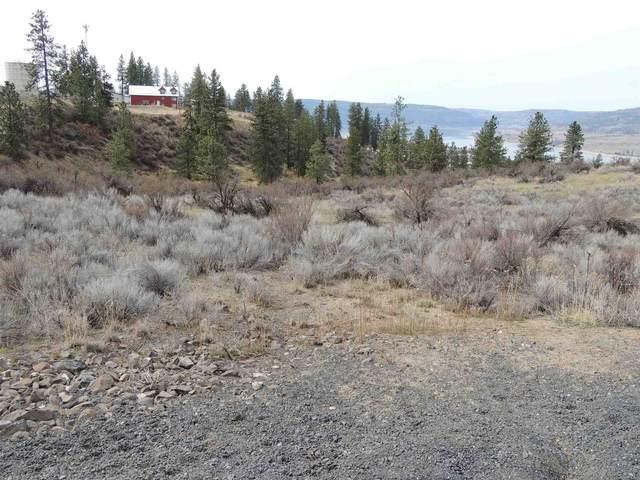 42255 Deer Heights Dr N Lot 1, Deer Meadows, WA 99122 (#202113794) :: The Hardie Group