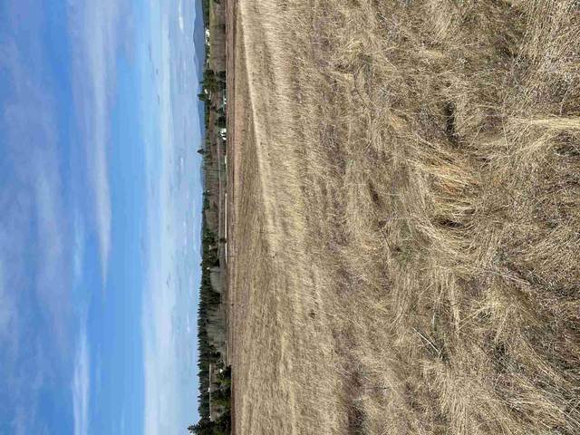 26XXX N Monroe Rd Parcel E, Deer Park, WA 99006 (#202113812) :: The Hardie Group
