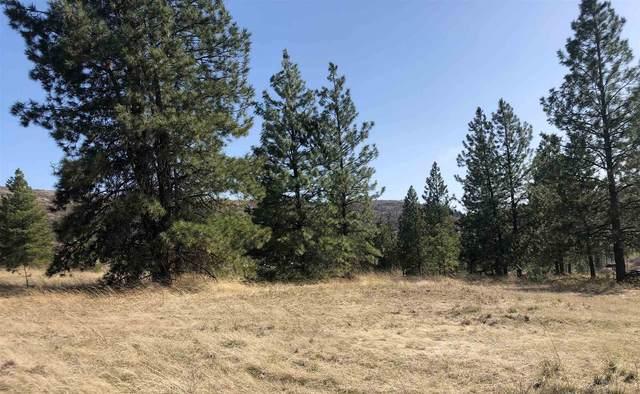 35760 N State Route 231 Hwy, Reardan, WA 99029 (#202113822) :: Top Spokane Real Estate
