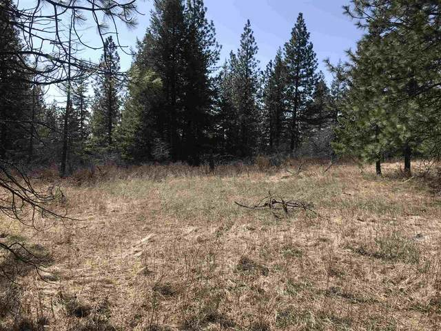 000 N Conklin Rd South Lot Apprx, Chattaroy, WA 99003 (#202113843) :: Elizabeth Boykin & Jason Mitchell Real Estate WA
