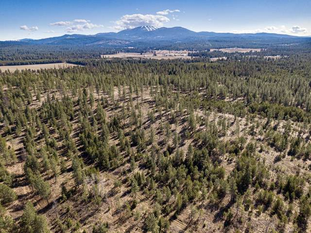 38850 N Elk Chattaroy Rd, Elk, WA 99009 (#202113854) :: The Spokane Home Guy Group