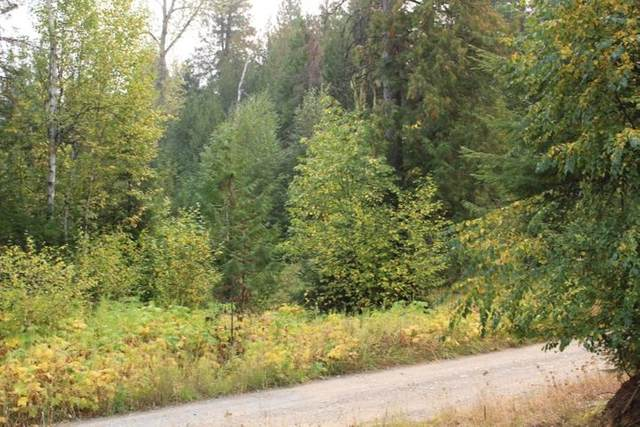 3661 TBD Deep Lake Boundary Lot 1 Rd, Colville, WA 99114 (#202113866) :: The Hardie Group