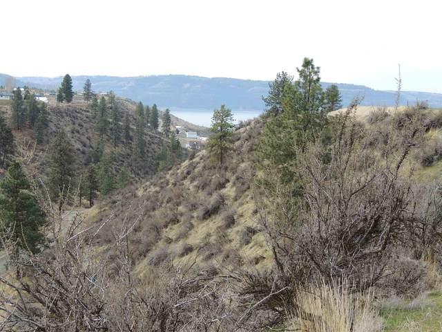 42520 Eagle Nest Rd. N. Lot 64, Deer Meadows, WA 99122 (#202113876) :: The Hardie Group