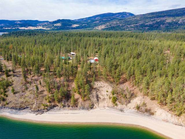 18 Collings Dr, Kettle Falls, WA 99141 (#202113932) :: Top Agent Team