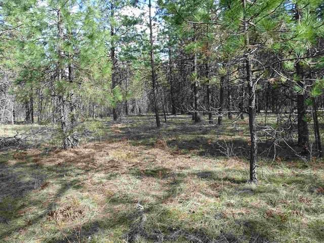 39xxx May Ln Under Developme, Elk, WA 99009 (#202113998) :: Parrish Real Estate Group LLC