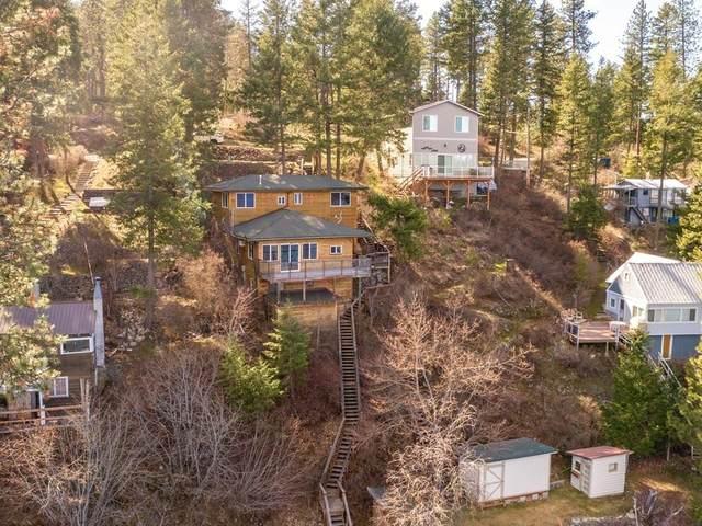 45188 Lake Shore Homes Rd, Loon Lake, WA 99148 (#202114025) :: Parrish Real Estate Group LLC