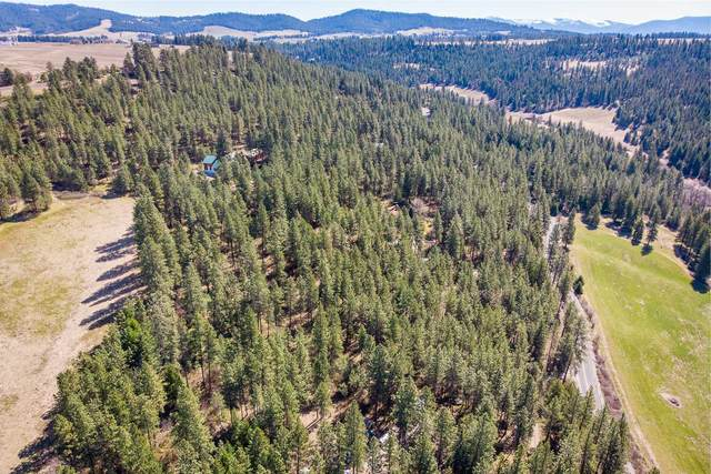 00000 E Moffat Rd, Mead, WA 99021 (#202114057) :: Parrish Real Estate Group LLC