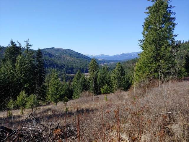865 E Lot 4 Aladdin Rd, Colville, WA 99114 (#202114241) :: Northwest Professional Real Estate