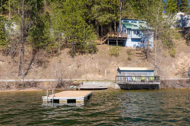 3959 N Deer Lake Rd, Loon Lake, WA 99148 (#202114285) :: Freedom Real Estate Group