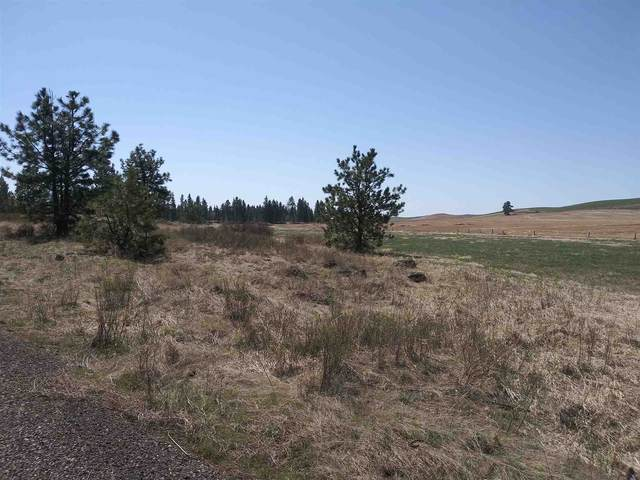 NKA S North Pine Creek Rd, Spangle, WA 99031 (#202114296) :: Northwest Professional Real Estate