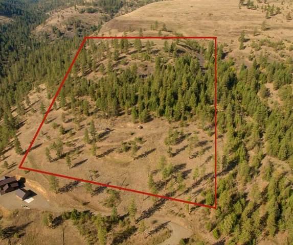 35770 N Spruce Grouse Ln, Davenport, WA 99122 (#202114330) :: The Spokane Home Guy Group
