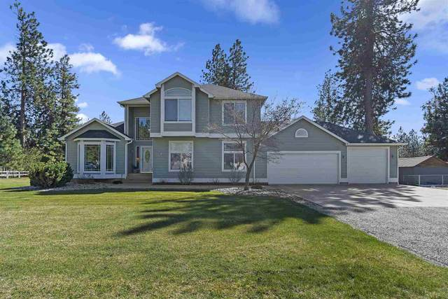 6217 Moriah Dr, Nine Mile Falls, WA 99026 (#202114333) :: The Synergy Group