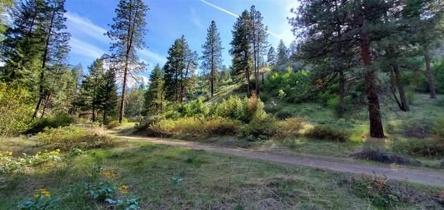 XX Tri Canyon Ranch -Tbd Rd, Creston, WA 99117 (#202114633) :: The Hardie Group