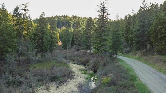 NKA E Tamarack Canyon Rd, Davenport, WA 99122 (#202114675) :: Elizabeth Boykin | Keller Williams Spokane