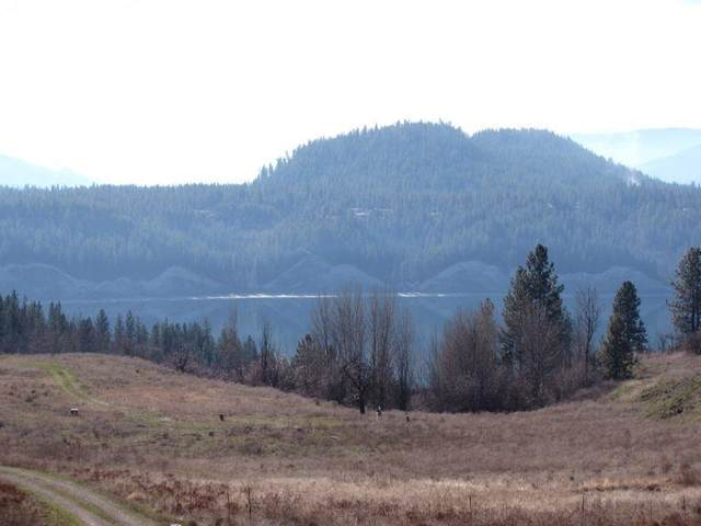 1237 Lot P Gold Edge Mine Rd, Kettle Falls, WA 99141 (#202114783) :: The Synergy Group
