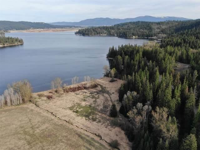 13111 N West Newman Lake Rd, Newman Lake, WA 99025 (#202114863) :: Top Spokane Real Estate