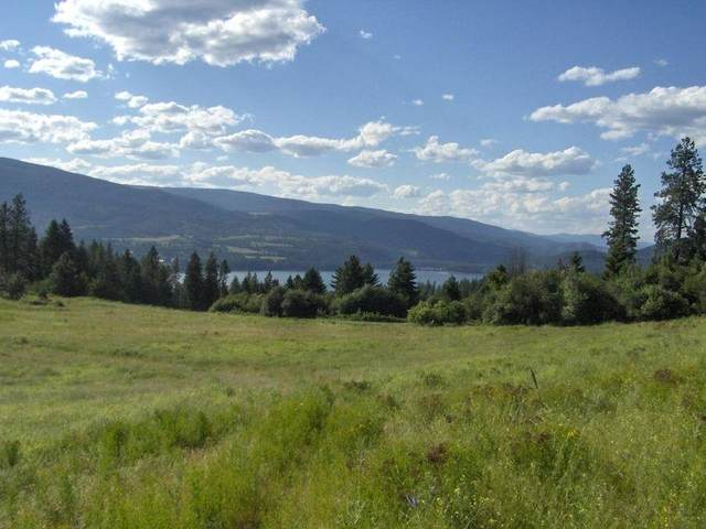 1237 Lot D Gold Edge Mine Rd, Kettle Falls, WA 99141 (#202114880) :: The Synergy Group
