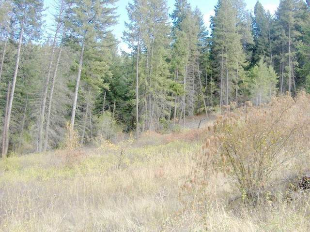 12XX Lot L Gold Edge Mine Rd, Kettle Falls, WA 99141 (#202114883) :: The Synergy Group