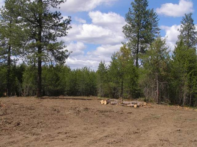 1919 Fausett Ln, Deer Park, WA 99006 (#202114924) :: Northwest Professional Real Estate