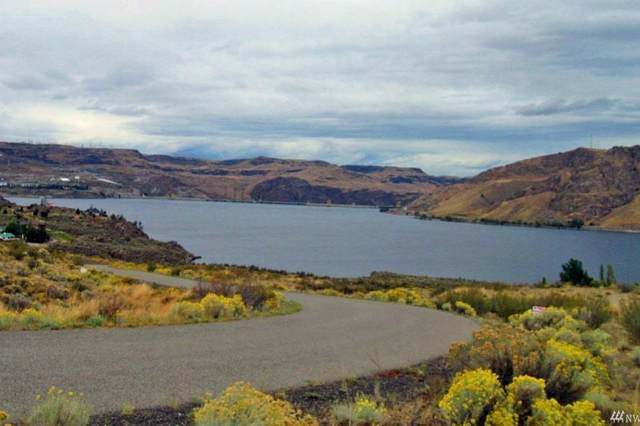 45750 Fdr Estates Dr, Grand Coulee, WA 99133 (#202114926) :: Mall Realty Group