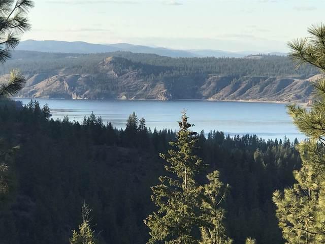 XX Timber Bay Dr, Davenport, WA 99122 (#202114999) :: The Spokane Home Guy Group