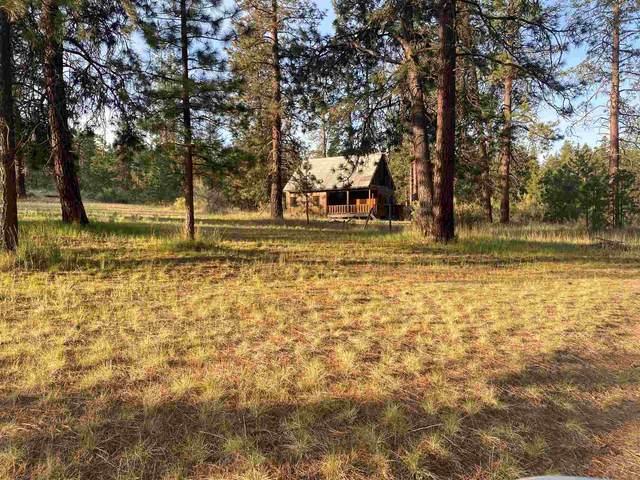 45176 N Cougi Ln, Davenport, WA 99122 (#202115101) :: The Spokane Home Guy Group