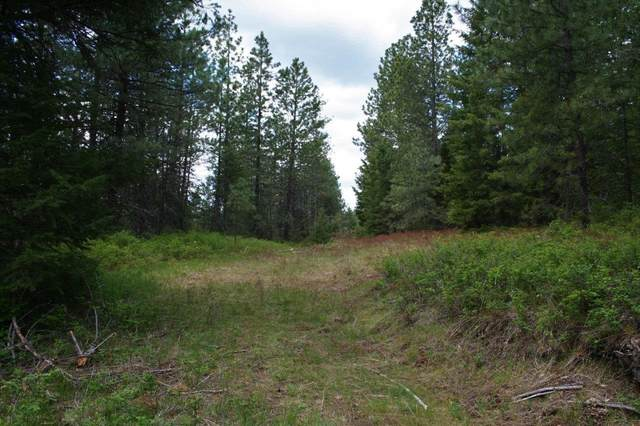 Elk, WA 99009 :: Northwest Professional Real Estate
