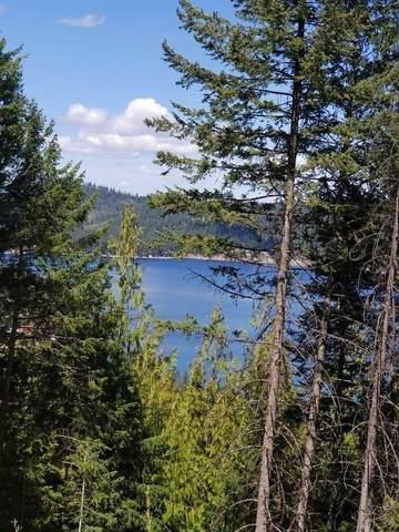 XXXTBD E Deer Lake Rd, Loon Lake, WA 99148 (#202115220) :: The Synergy Group