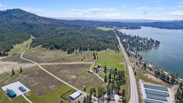 3940 Garden Spot Rd, Loon Lake, WA 99148 (#202115364) :: Cudo Home Group