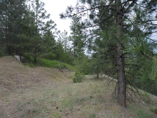 XX Ali Vista Way, Loon Lake, WA 99148 (#202115519) :: Freedom Real Estate Group
