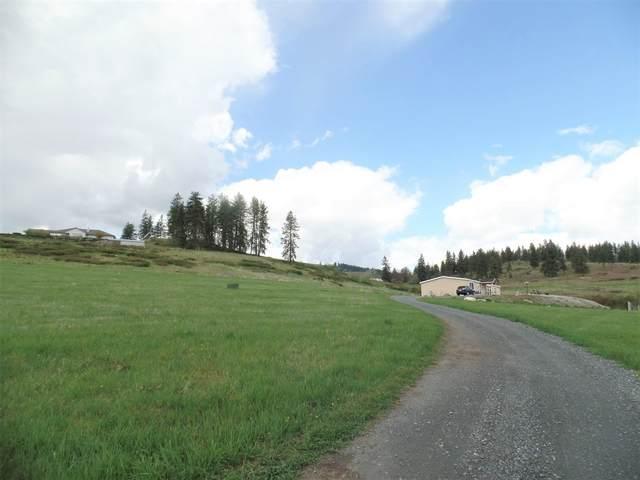 38 Windy Ridge Ln, Kettle Falls, WA 99141 (#202115566) :: Inland NW Group