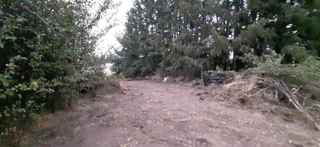 141 S Water St, Tekoa, WA 99033 (#202115823) :: The Spokane Home Guy Group