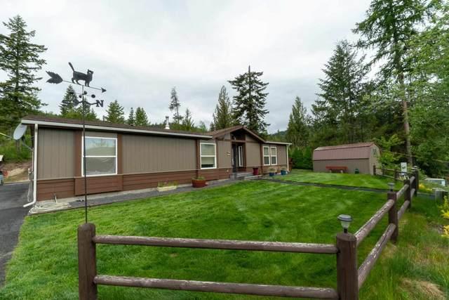 16717 N Cougar Ln, Newman Lake, WA 99025 (#202115969) :: The Hardie Group