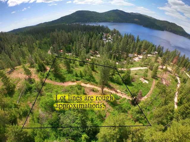 xxx2 E Deer Lake Rd Lot 2, Loon Lake, WA 99148 (#202116089) :: Freedom Real Estate Group