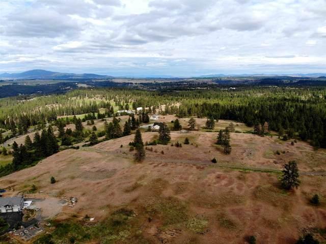 150XX S Stentz Rd, Spangle, WA 99031 (#202116130) :: Top Spokane Real Estate