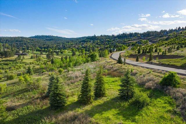 11415 S Fairway Ridge Ln, Spokane, WA 99224 (#202116303) :: Bernadette Pillar Real Estate