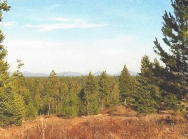35XXX N Vista Point Ln, Deer Park, WA 99006 (#202116356) :: Cudo Home Group