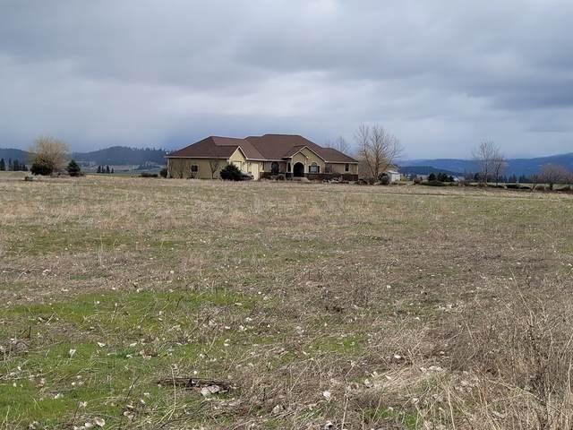 5917 E Peone Rd, Mead, WA 99021 (#202116382) :: Bernadette Pillar Real Estate