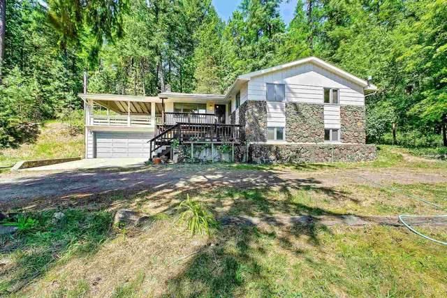 26705 N River Estates Dr, Chattaroy, WA 99003 (#202116775) :: Bernadette Pillar Real Estate