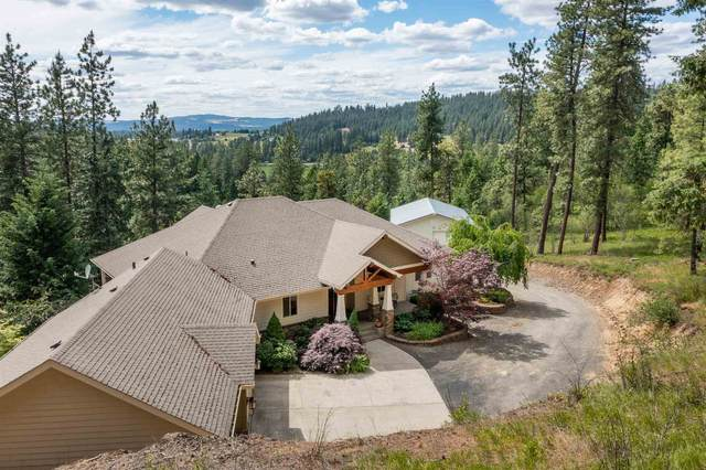 8801 E Day Rd, Mead, WA 99021 (#202116967) :: Bernadette Pillar Real Estate